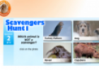 Scavengers Hunt | Recurso educativo 17048