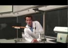 Coulomb's Law | Recurso educativo 760744