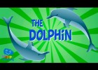 The Dolphin | Educational Video for Kids. | Recurso educativo 768377