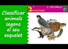 Animals verterbrats | Recurso educativo 768672