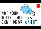 Water in the human body | Recurso educativo 779657